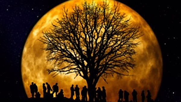 Super Moon Let Go, Trust in Divine Order