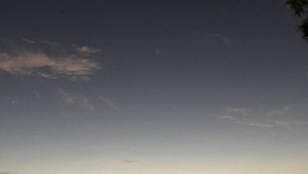 wonderblog nov 18 new moon