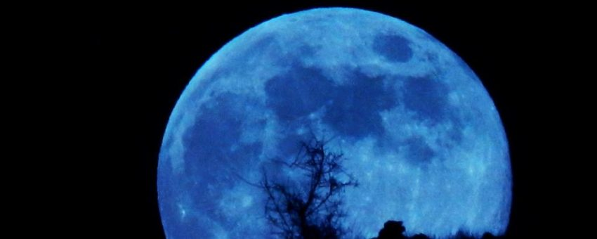 Blueberry Full Moon, Time of Awakening – Wonderworks Healing Arts