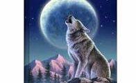 Celebrate Full Wolf Moon &...