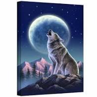 Celebrate Full Wolf Moon – Wonderworks Healing Arts