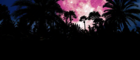 Pink Super Moon – Lo...